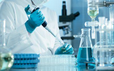 Projets de guide du laboratoire propre à l'établissement