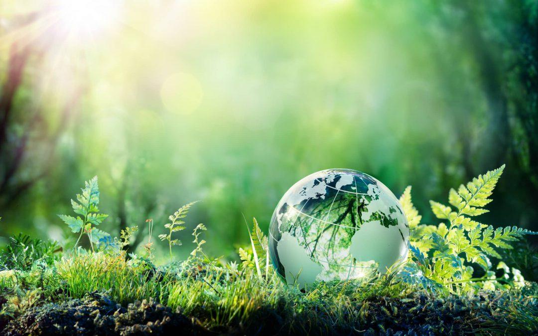 Perturbateurs Endocriniens Environnement et Reproduction (PEER 2021)
