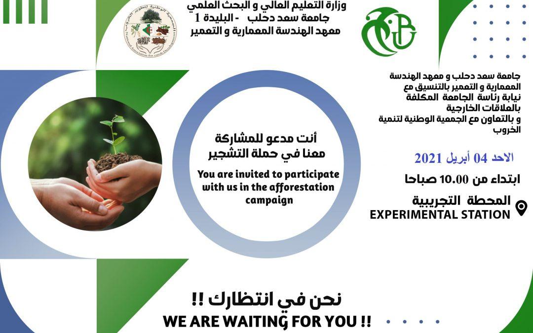 2eme campagne de reboisement de la caroube à l'Université de Blida 1